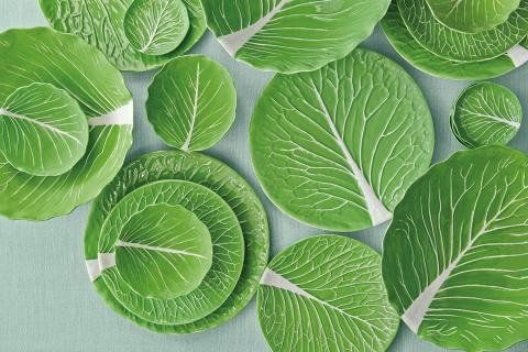 ส Burch x Dodie Thayer collaboration: new lettuce-ware