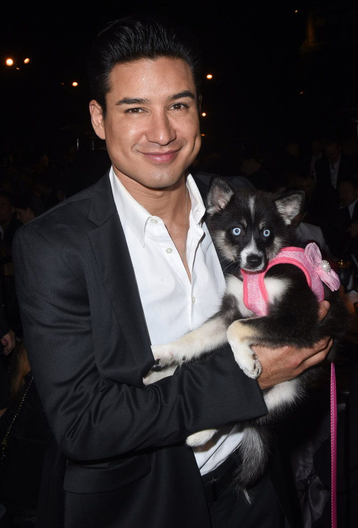 पुरुषों with Animals - Embed - Mario Lopez
