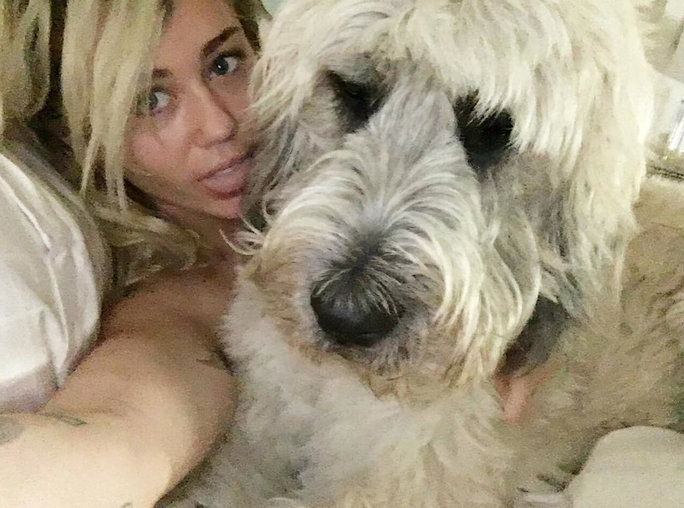 MILEY AND DORA (LIAM'S DOG)