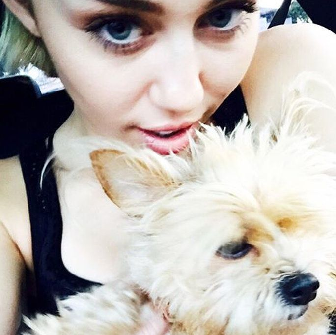 MILEY AND THE LATE LILA